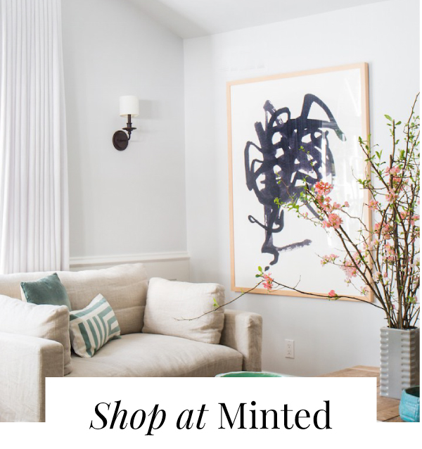 shopminted1